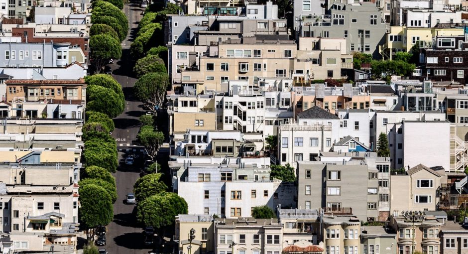 meredith-martin-san-francisco-real-estate-trees-in-real-estate