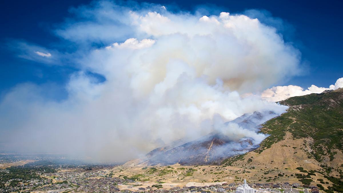 meredith-martin-wildfire-insurance